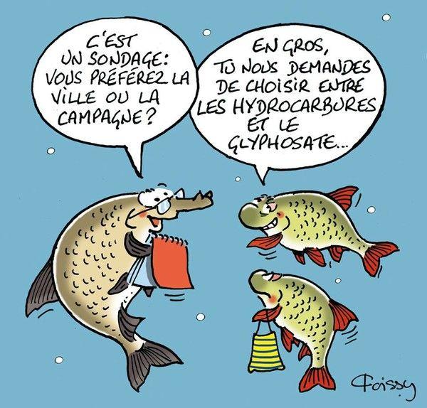 Dessin humoristiques - Dessin 4x4 humoristique ...